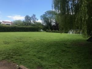 Playing field.